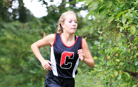 Adams and Ungvarsky End Outstanding Cross Country Seasons Among Top Runners in State.