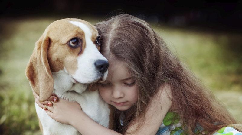 The+Love+of+My+Dog+Chloe